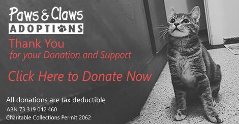 DonationsClickDonate